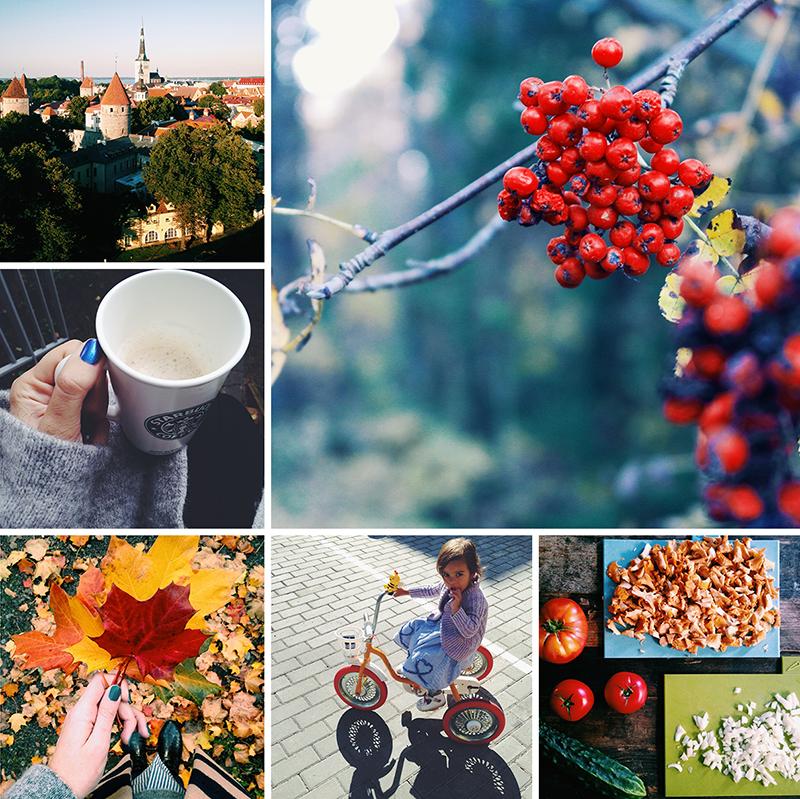 Autumn on Instagram