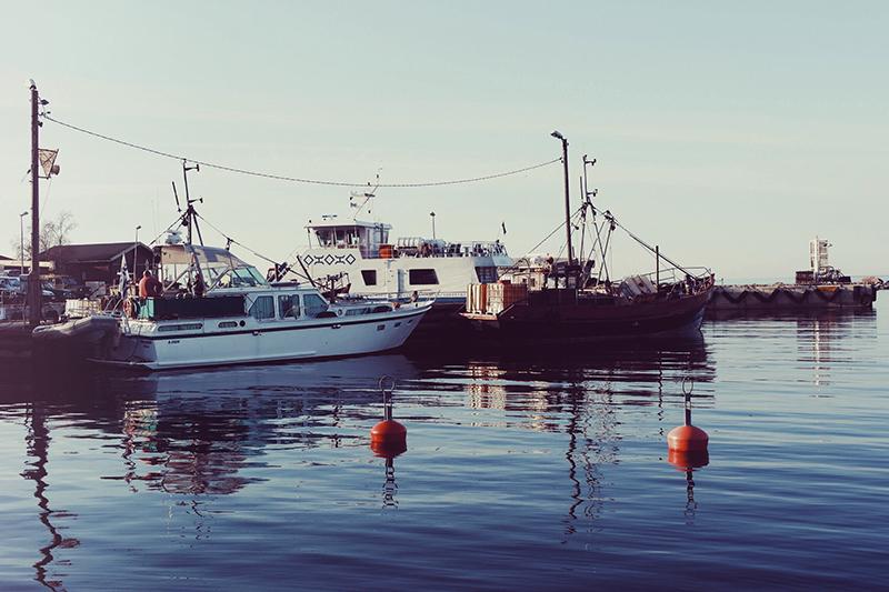 Boatlife7